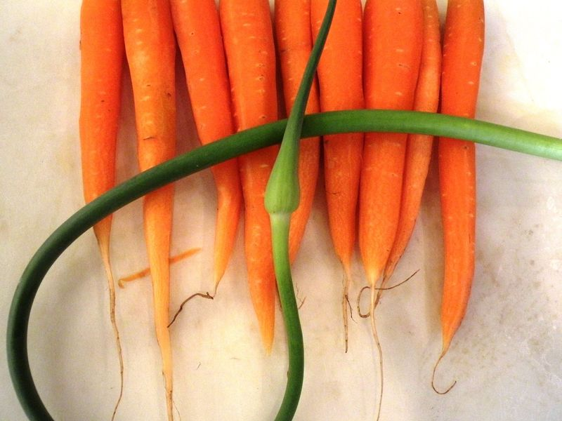 Garlic Scape    and Carrots2